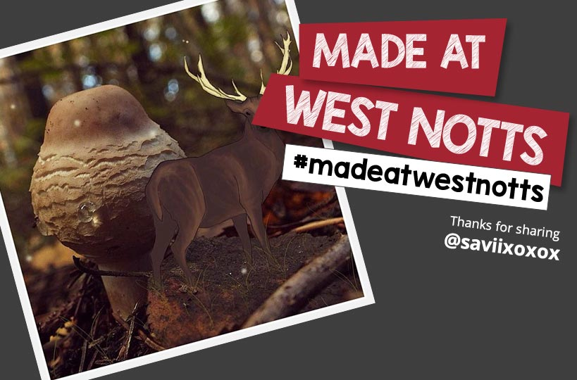 Search the #madeatwestnotts hashtag on Instagram to see what our students get up to at college.